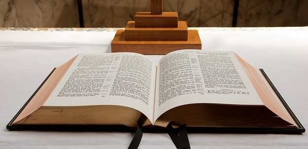 King James Bible of Netherlands Reformed Congregation